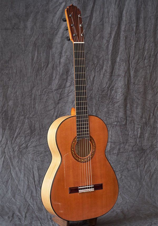 Guitar Flamenco Classical 7 String Modelo Calle Carpenteria